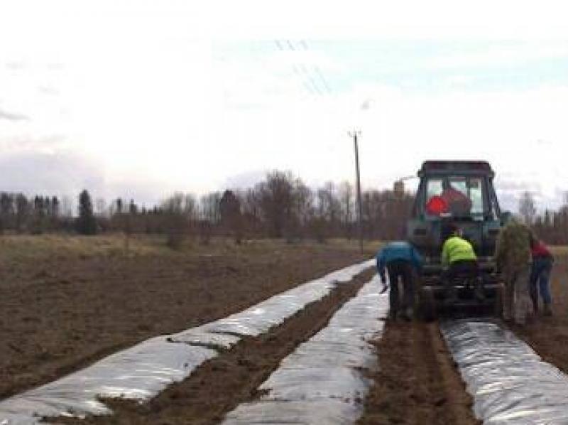 Uue põllu rajamine